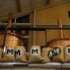Bezoek aan brouwerij Maximus